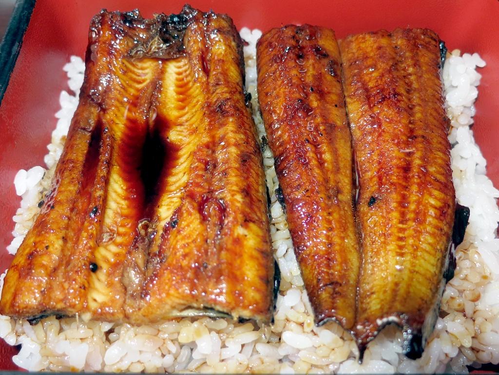鹿児島志布志で食べた鰻重は背開きの地焼きだった鹿児島志布志で食べた鰻重は背開きの地焼きだった