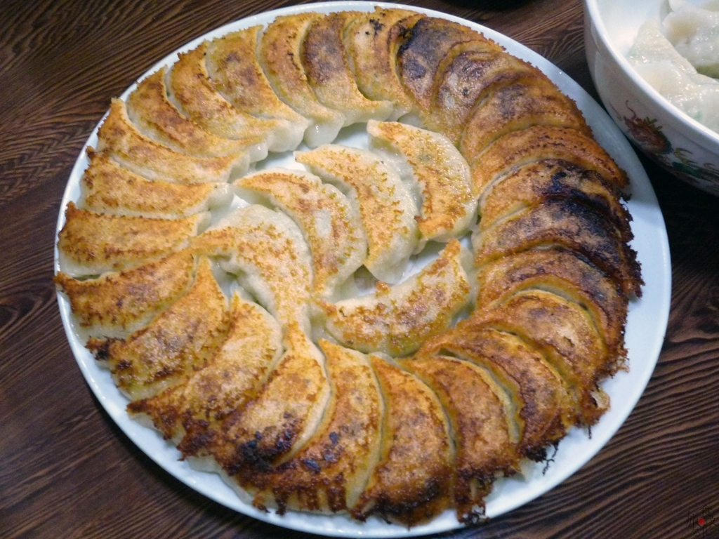 「満腹」の円盤餃子