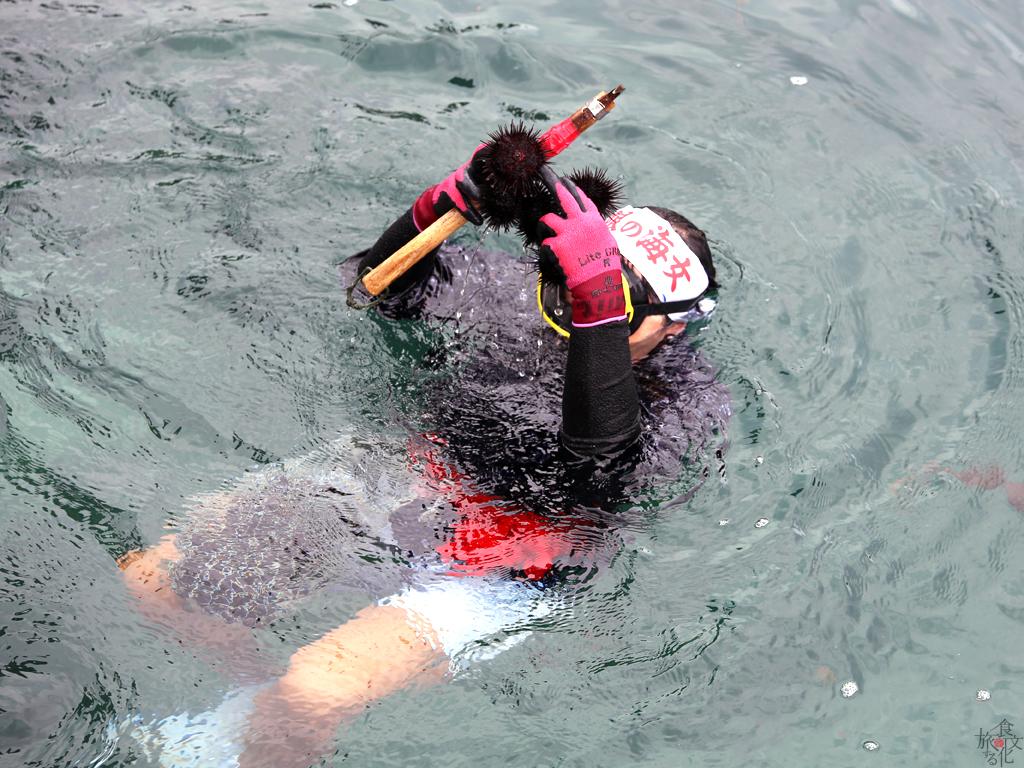 小袖海岸で行われた海女のうに漁